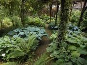 Bowdens Gardens