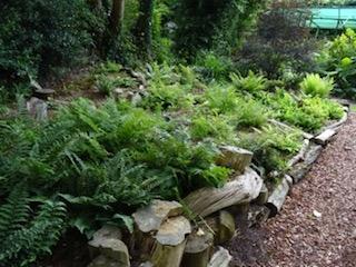 Bowdens Stumpery
